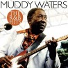 Muddy Waters - R & B Hits