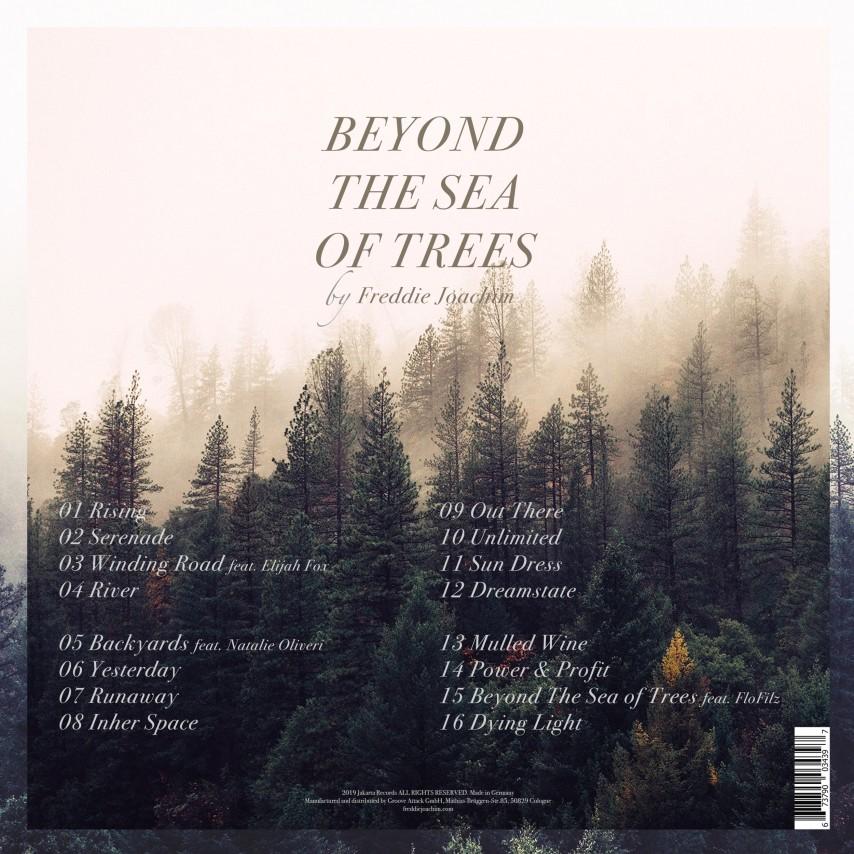 Freddie Joachim - Beyond The Sea Of Trees