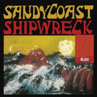 Sandy Coast - Shipwreck