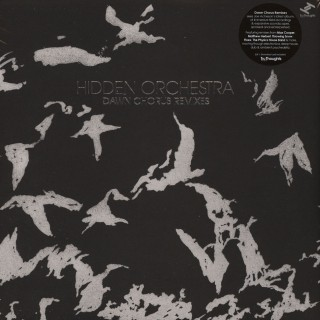 Hidden Orchestra - Dawn Chorus Remixes